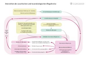 Interaktion der psychischen und neurobiologischen Regelkreise, Grafik 1